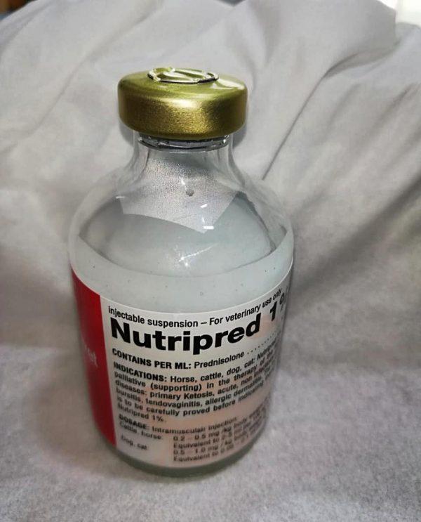 Buy Nutripred 10ml online