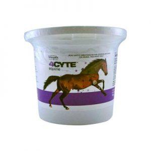 buy 4Cyte Equine 700gm online,4Cyte Equine 700gm