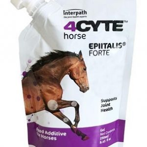 4CYTE™ Horse (Equine) Epiitalis® Forte Gel